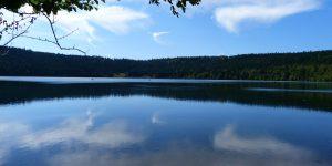 landscape-claude05-alleva